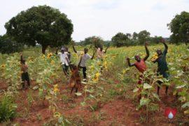 drop in the bucket amokoge primary school lira uganda africa water well-19