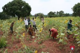 drop in the bucket amokoge primary school lira uganda africa water well-21