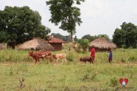 Drop in the Bucket Ateri Primary School Lira Uganda Africa Water Well-13