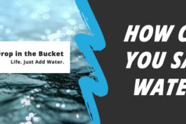 How Can You Save Water Quiz